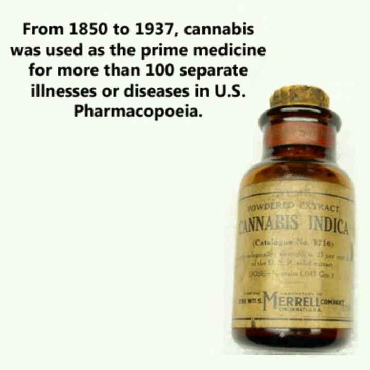 Cannabis Cures Cancer and the Government Knows It