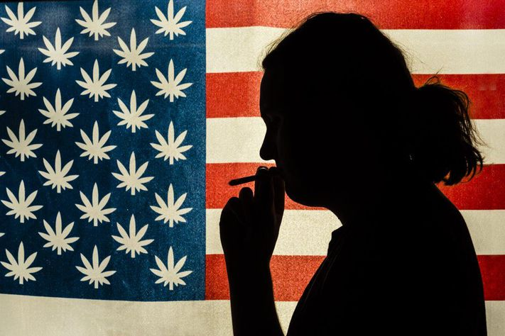 How Cannabis Prohibition Is Harming Veterans Suffering From PTSD And Other Ailments